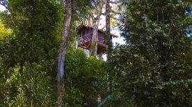 Inkaterra, Canopy Tree House, Tambopata (Perú)